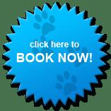 Make an Online Booking