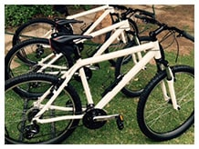 Mountain Biking Oudtshoorn - De Zeekoe Guest Farm