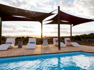 Oudtshoorn Guest House Swimming Pool