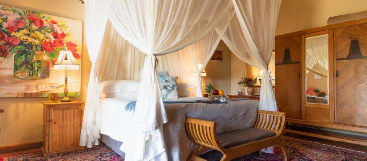 Oudtshoorn Karoo Accommodation View