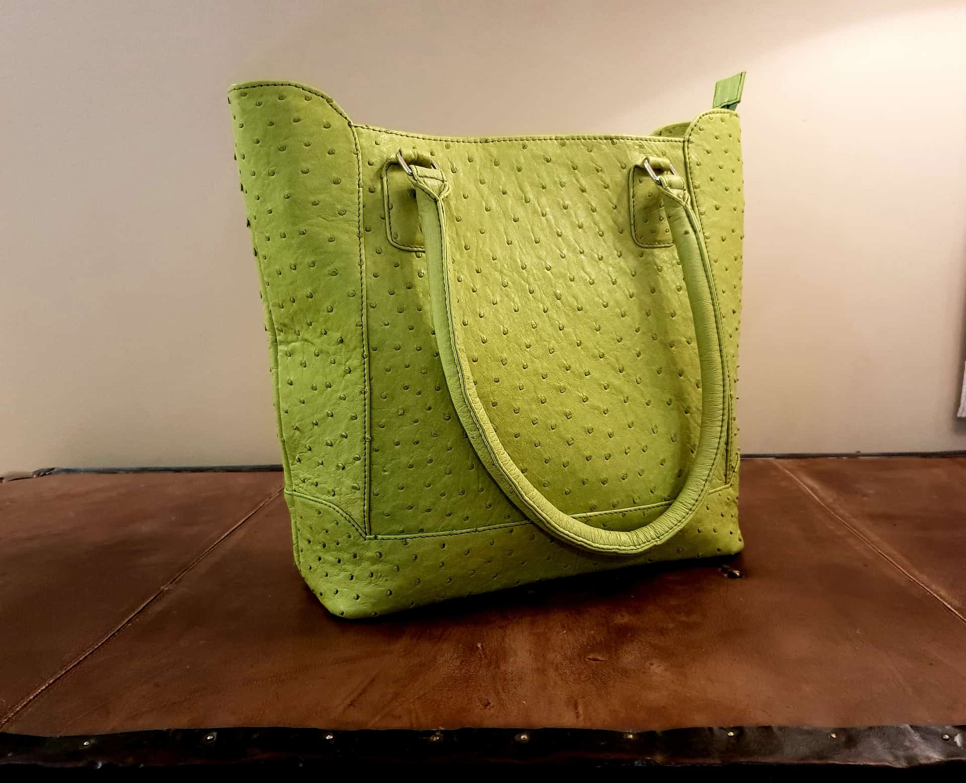Green Leather Hand Bag Karoo