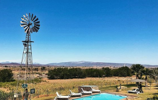 Oudtshoorn Farm swimming pool windmill