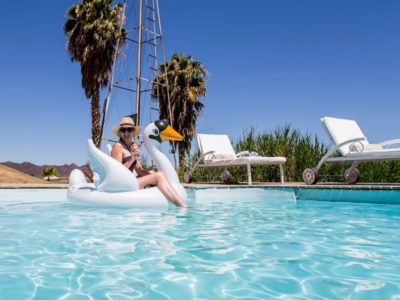 Guest house swimming pool inflatable swan