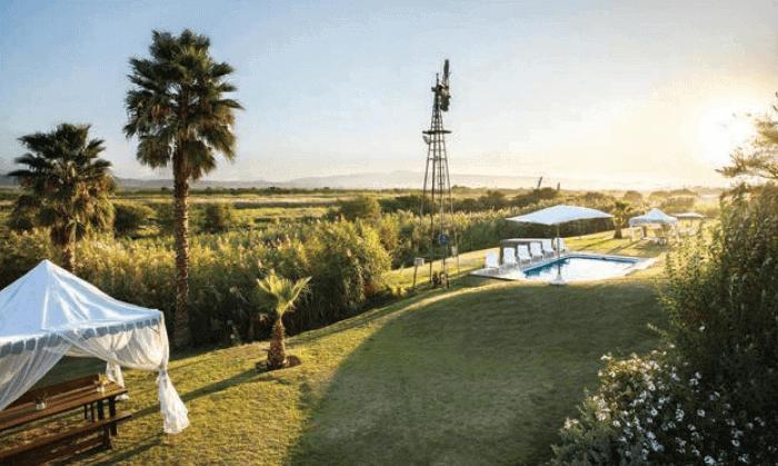 Dezeekoe Guest Farm windmill and pool